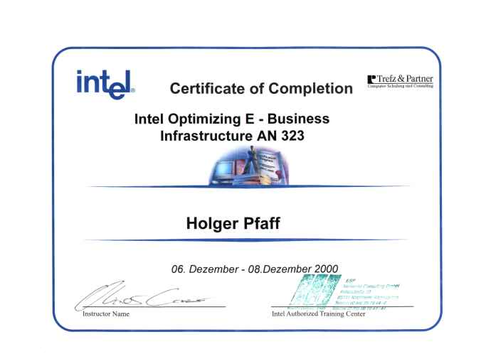 Intel E Business